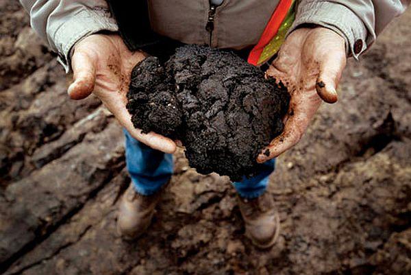 tar sand oil