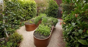 Water trough planter