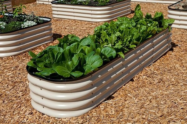 Water trough planter_1