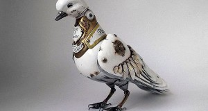 Recycled Dove  1