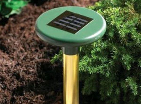 Solar underground pest deterrent