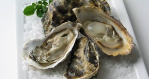 Macs-Sinku-Oysters-half-shell-macsoysters-dot-com