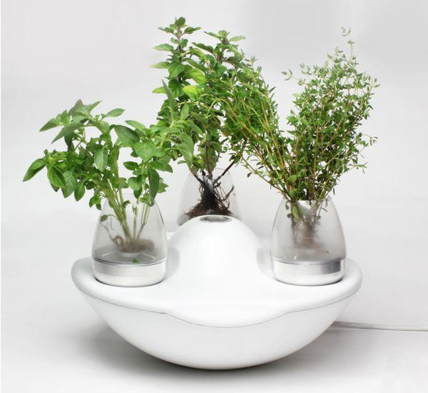 Pod garden system