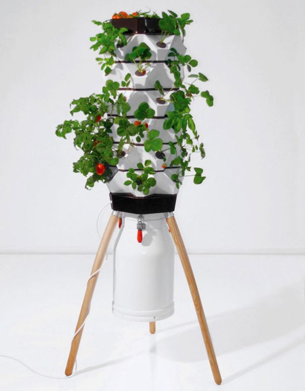 Vertical Fogponic garden