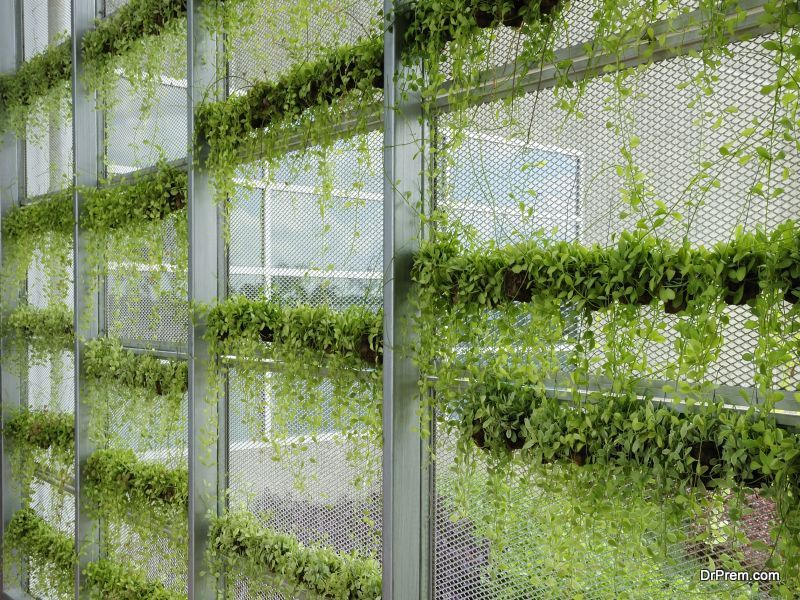 Awesome Vertical Garden