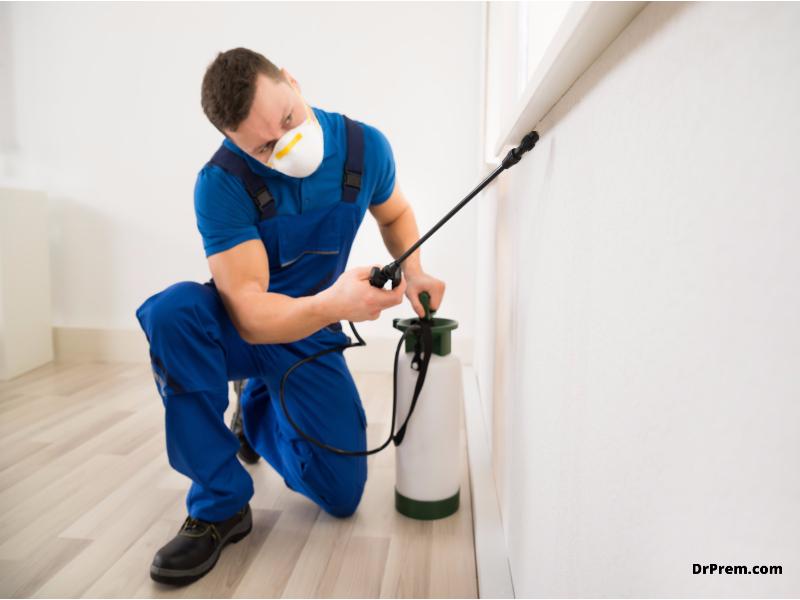 11 simple eco-friendly pest control methods