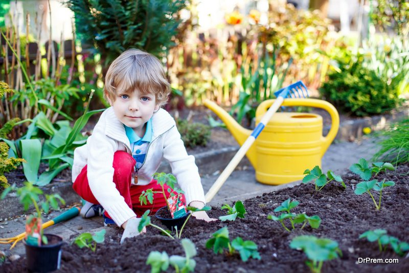 Try growing an organic garden