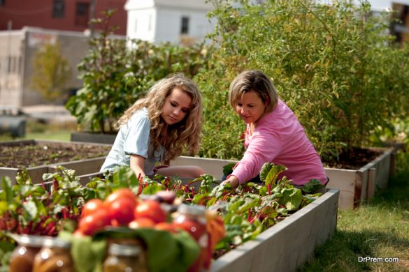 homegrown fruits and vegetables