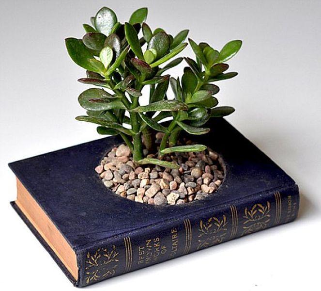 Create a planter