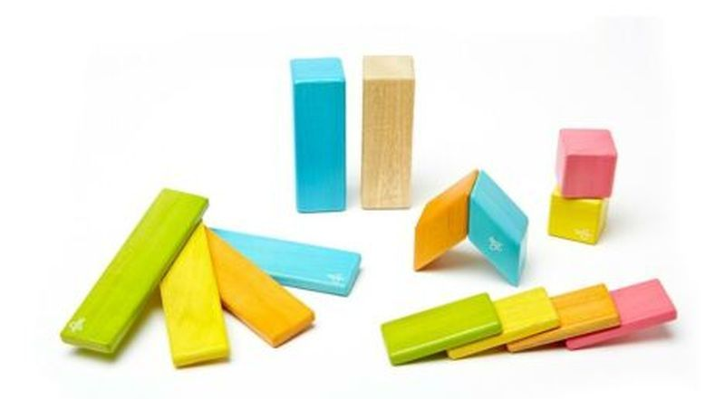 Eco-Friendly Tegu Magnetic Wooden Blocks