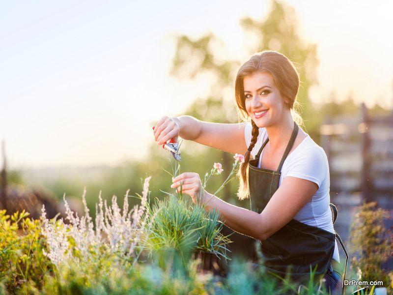 certified organic flowers
