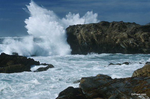 The state may turn wave power