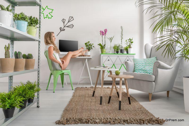 Having Indoor plants