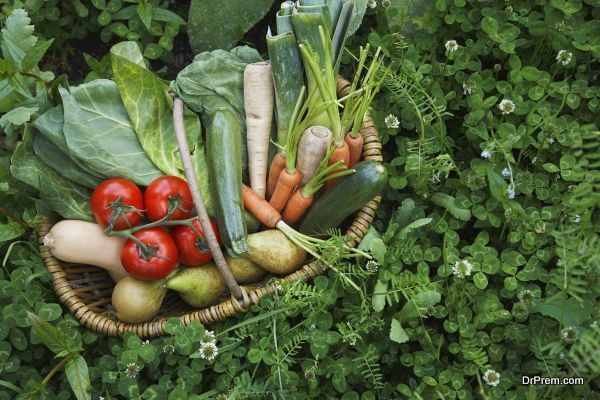 Use local food sources