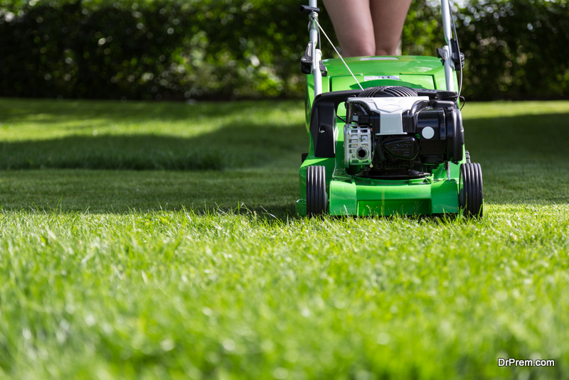 Tips for A Better Looking and Healthy Lawn