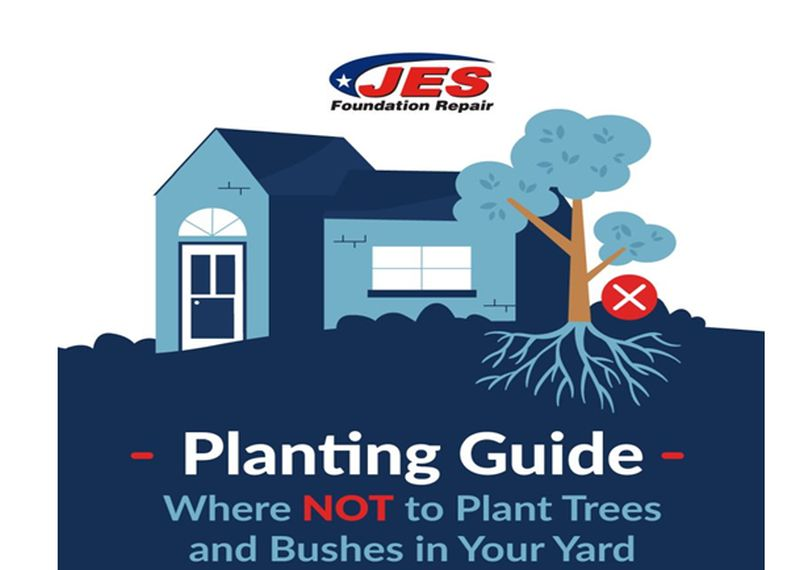 Planting Guide What to Plant and What Not to Plant