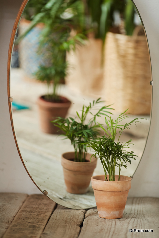 Wonderful mirror