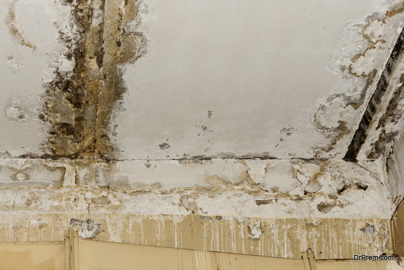 Moisture causes the mold