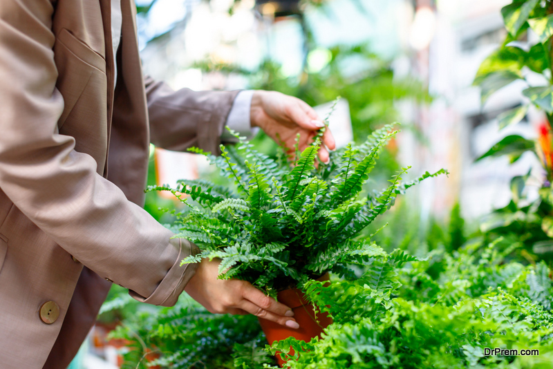 Woman choosing potted plant